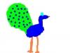 minpins_-_drawing_peacocks_3