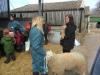 Farm Visit (101)