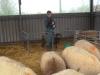 Farm Visit (105)