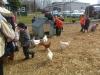 Farm Visit (111)