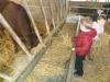 Farm Visit (121)