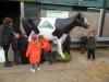 Farm Visit (122)