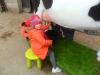 Farm Visit (124)