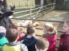 Farm Visit (5)