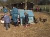 Farm Visit (53)