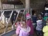 Farm Visit (63)