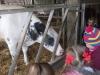 Farm Visit (65)