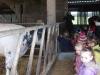 Farm Visit (66)