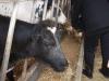 Farm Visit (67)
