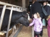 Farm Visit (68)
