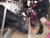 Farm Visit (69)