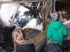 Farm Visit (71)