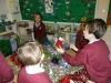 Alpaca Christmas Party (3)