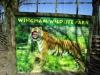 Wingham Wildlife Park (21)