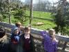 Wingham Wildlife Park (25)