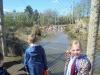 Wingham Wildlife Park (3)