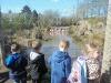 Wingham Wildlife Park (4)