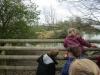Wingham Wildlife Park (41)