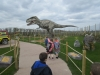 Wingham Wildlife Park (47)