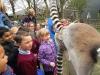 Wingham Wildlife Park (53)