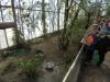 Wingham Wildlife Park (9)