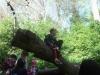 Brockhill Park (13)