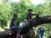 Brockhill Park (14)