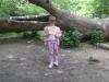 Brockhill Park (24)