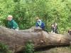 Brockhill Park (25)