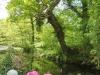 Brockhill Park (67)