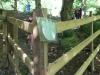 Brockhill Park (8)