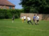 Cricket Competition (9)