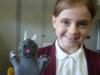 Glove Puppets (20)