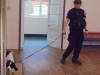 Police Dogs (13)