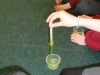 Science Week - Science Boffins (37)