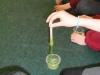 Science Week - Science Boffins (37)