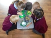 Science Week - The Gruffalo (1)