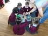 Science Week - The Gruffalo (23)
