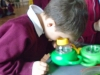 Science Week - The Gruffalo (24)