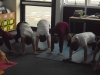Yoga (19)