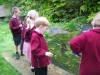 pond-dipping-6