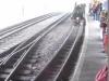 waddells-train-ride-5