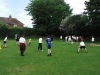 Cricket_(10)