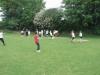 Cricket_(11)