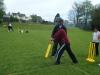 Cricket_(3)