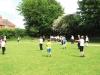 Cricket_(5)